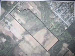 terre a vendre zoné blanc lot no. 2965861