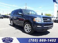 2015 Ford Expedition Limited Sudbury Ontario Preview