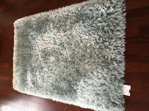 "4x 5'9"" sea foam area rug Pier One"