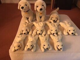 Collection of 11 Andrex Cuddly puppies