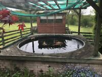 Complete Pond setup