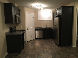 2 Bedroom Basement Suite: T.V , Internet, And Utilities Included