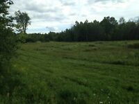 Outstanding 60 Acre Lot for Sale Near Perth, Ontario