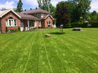 lawn care/gutter cleaning south shore