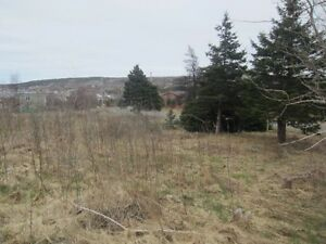 75 First Colony Drive, Cupids - MLS# 1135418 St. John's Newfoundland image 6