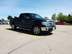 2013 Ford F-150 Super XLT/XTR 4X2 Pickup Truck