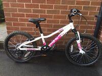 Evans Cycle girls 20inch Mountain Bike