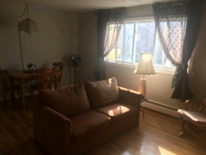 2 bedroom Apt on Centennial Drive (West) -Main Floor