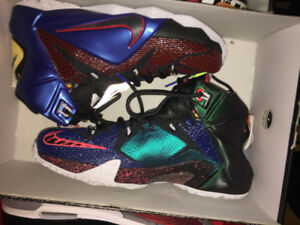 LEBRON 12 WHAT THE - SIZE 9.5