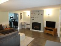 Bright, Clean & Newly Renovated Basement Suite with Full Kitchen