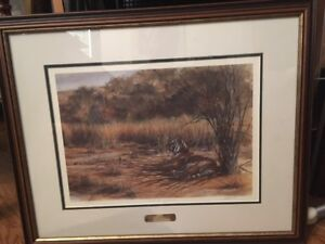 """Shades of Gold"" signed, limited edition framed print"