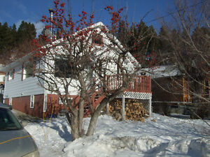 Crowsnest Two Bedroom House for Sale
