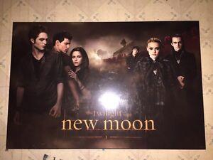 NECA twilight-new moon wood poster Cambridge Kitchener Area image 1