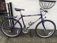 Saracen Trax mountain bike