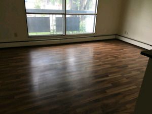 Newly renovated 1 bedroom apartments by UofA/whyte ave