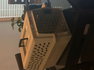 Pet carrier and dog bed