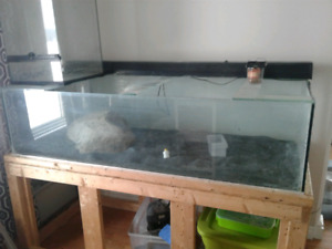 180 gallon custom tank and stand