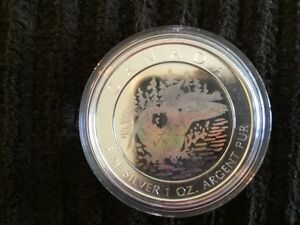 2002 Anniversary Loon Hologram Pure Silver Coin