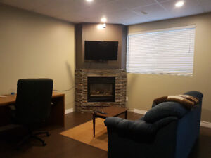 Fully Furnished One Bedroom Walk Out Basement Suite