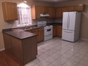 Kitchen cabinets with countertops