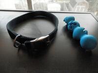 Black nylon dog collar + treat toy
