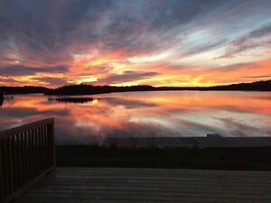 Lot 308 Pond Frontage Cabin House / Cabin Lot St. John's Newfoundland image 2