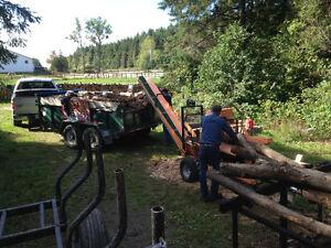 Processeur de bois de chauffage  20 tonne avec moteur 14 HP