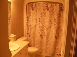 2 Bedrooms For Rent In Fully Furnished Newer Home All Inclusive London Ontario image 7