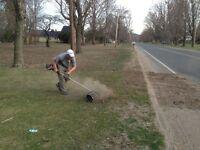Nettoyage de stationnement/pelouse et tonte de gazon