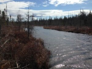 Hunting land 106 acres
