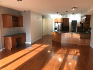 1200 sq.ft Condo in the River Valley