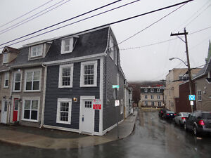 NEW PRICE! 95 HAMILTON AVE, ST JOHN'S