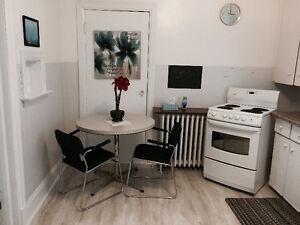 Fully Furnished  Apts for Rent (Long&Short Term Rentals)