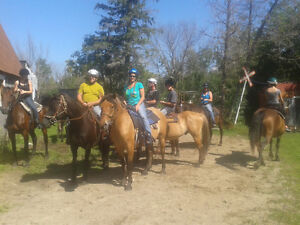 Trail Guide Needed - Guide pour randonner equestre