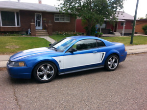 03 mustang with lotes of performance and suspension mods