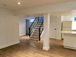 Newly renovated bright and spacious basement apartment near park
