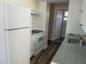 Spacious Comfortable 3 Bedroom Townhouse for Rent