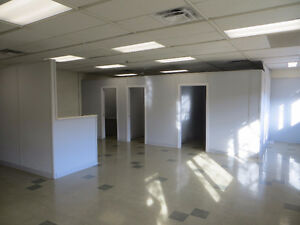4700 Sq Ft Medical/Lab Clinic, Chiropractic, Massage!