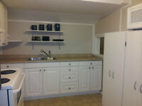 Two Bedroom Lower Suite, Pet Friendly, New Kitchen, Furnished