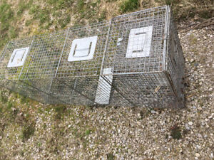 Cage live traps   Catch dogs coyotes