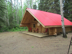 Cozy log cabin in the woods for rent