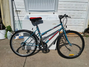 1 MOUNTAIN BIKE    I DELIVER