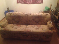 Free couch with hide-a-bed
