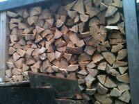 Logs/firewood/kindling for sale