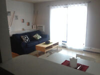 Beautiful One Bedroom Condo Downtown