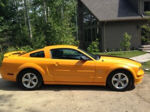 2007 Mustang GT Deluxe Coupe