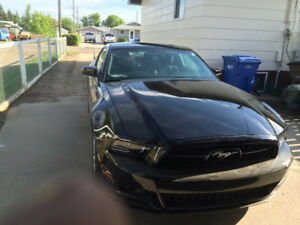 For Sale: 2014 Mustang