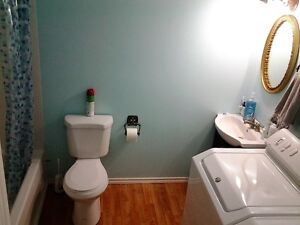 One bedroom suite for a short term rental from 1st January 2017 Regina Regina Area image 2