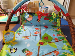Baby Play Mat - developlace (Tiny Love)