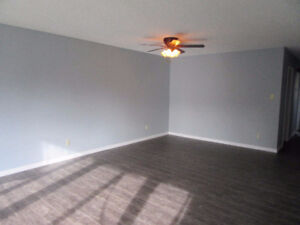 Newly Renovated Home, Includes Basement Suite with Own Entry!!